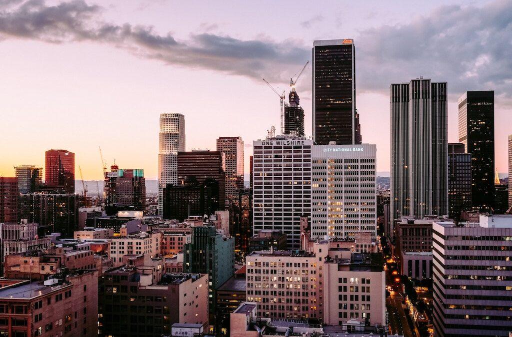 Brian Ferdinand: Establishing a Company in LA Makes Business Sense