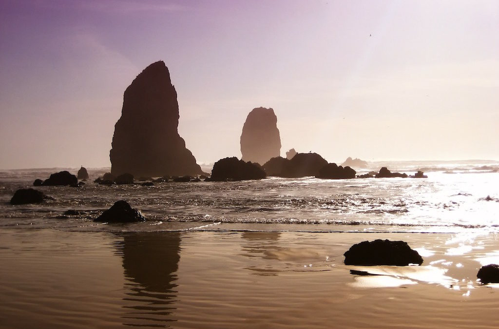 Where Should You Go in Oregon?