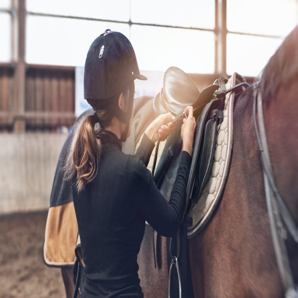 The Basics of Horseback Riding
